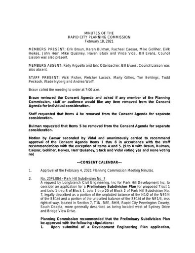 2021 2 18 Planning Commission Minutes pdf