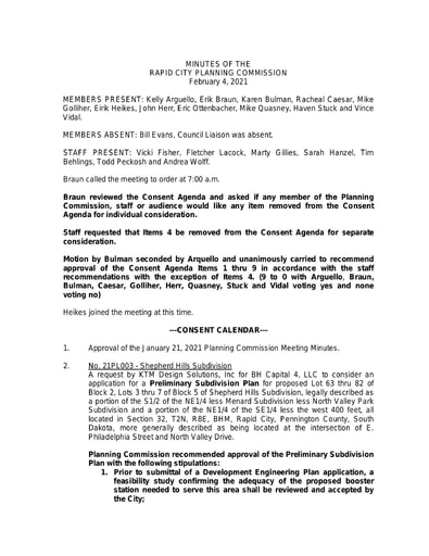 2021 2 04 Planning Commission Minutes
