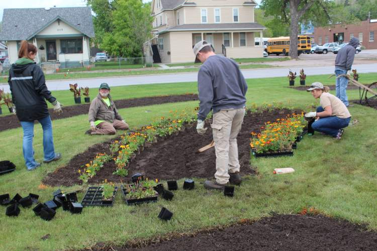City Parks crews are out planting flowers and landscaping in several areas of Rapid City.  Upwards to 15,000 flowers and shrubs will be planted.
