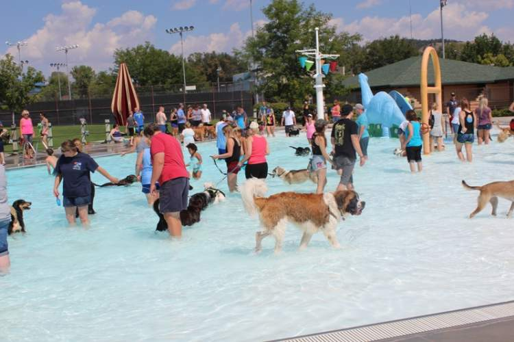 The fourth annual 'Wags and Waves' event for the Humane Society of the Black Hills is scheduled for Tuesday, September 3
